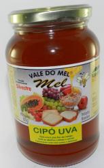 Onde comprar Mel Silvestre Cipo Uva 800g - Vale do Mel